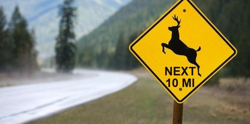 111 Deer Sign.jpg
