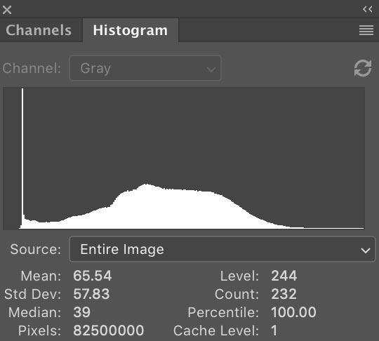 histogram_final.jpg