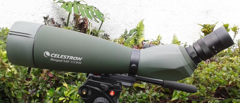 Celestron Regal M2 100ED-crop-1600x688_130318.jpg