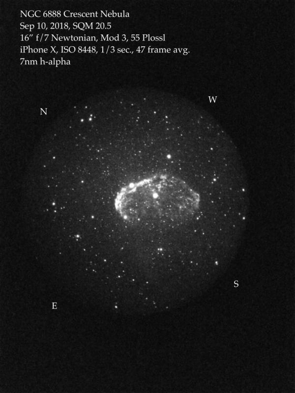 Cresent Nebula.jpeg