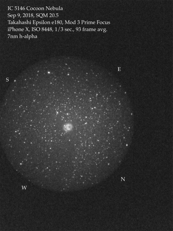 Cocoon Nebula, Epsilon 7nm.jpeg