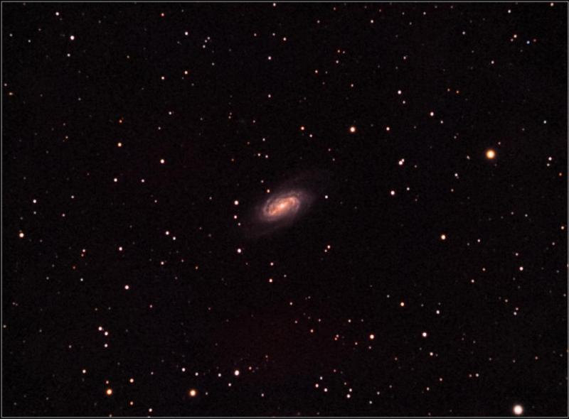 NGC2903 2nd, 3rd nights 188 subs 1hr 34m ISO 6400 30 sec flats in main DSS StarTools pass 2 denoised-b.jpeg