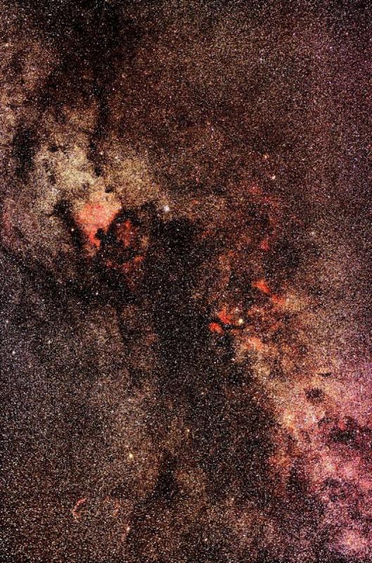 Cygnus_small.jpg