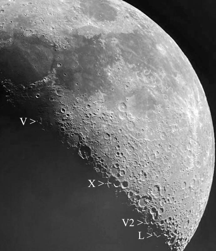 Lunar L Lunar V2 IMG_2564 Processed Rotated Cropped Resized 1000.jpg