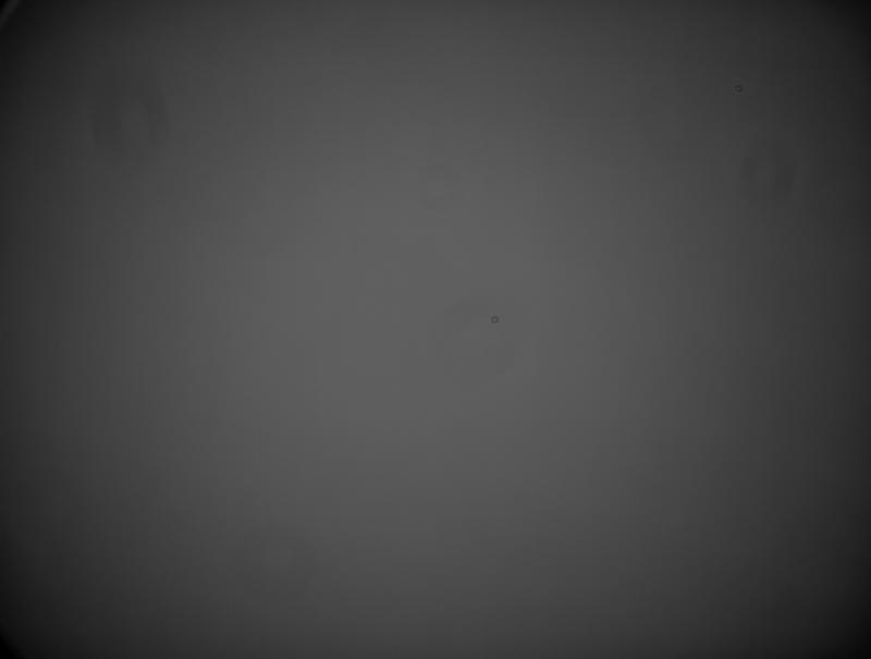 Master Flat Lum - 250 Frame Bias Subtracted_STF.jpg