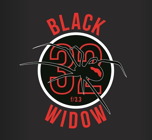 Black Widow (2).jpg