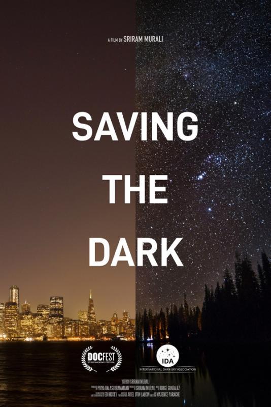 Optimized-SavingtheDark_poster_24x36_small (1).jpg
