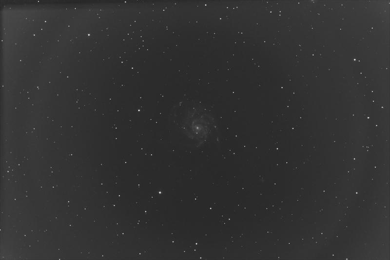 Pinwheel Galaxy Blue Channel.jpg