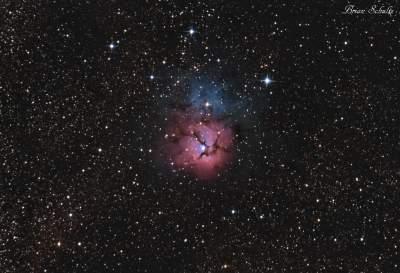 M20 Newt 183 30 250 resized.jpg