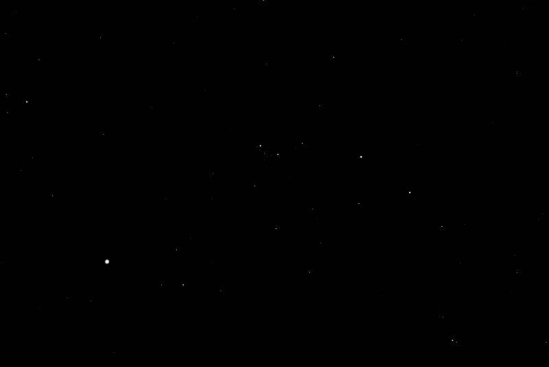 lights and darks.jpg