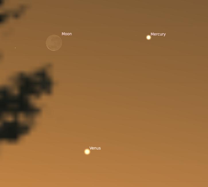 Screen Shot 2020-05-24 at 7.03.10 PM.png