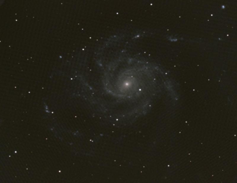 M101 - 5-24 and 5-29-2020 lower res.jpg
