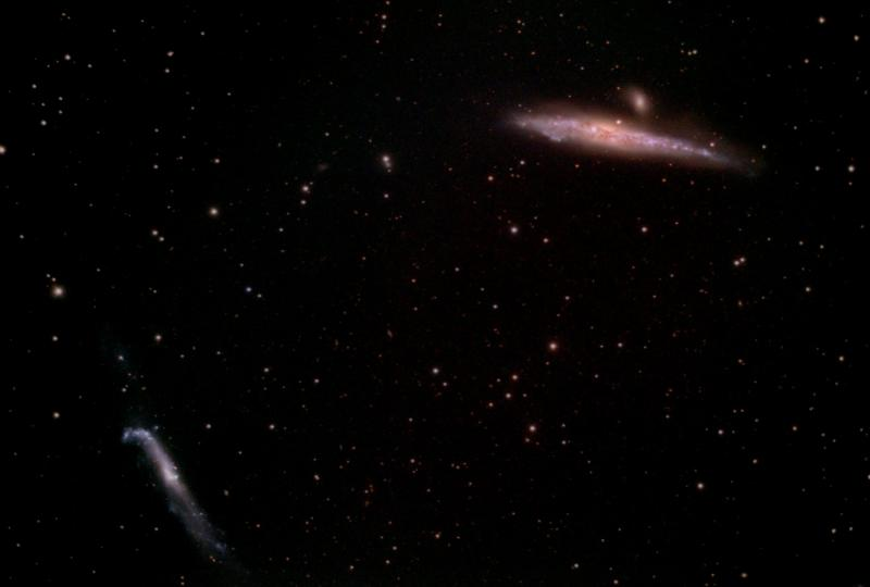 NGC4631_and friends.jpg