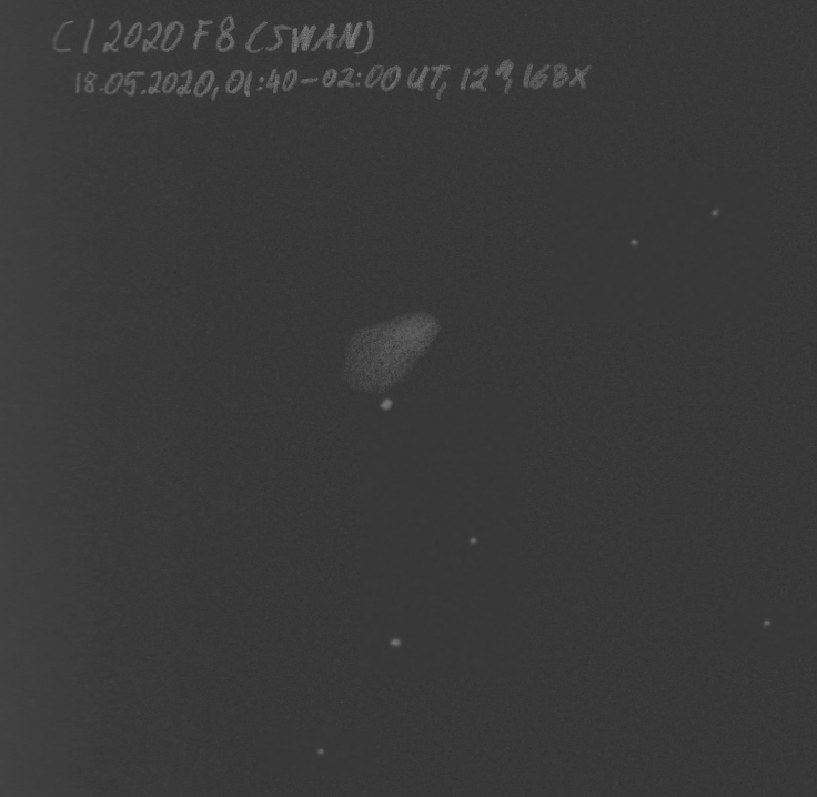 C2020F8Robin20200518.jpg