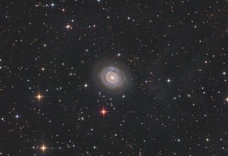 NGC3147small.jpg