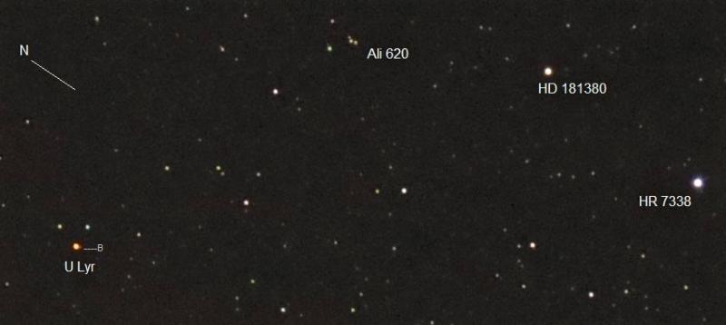 8 U Lyr Ali 620.jpg