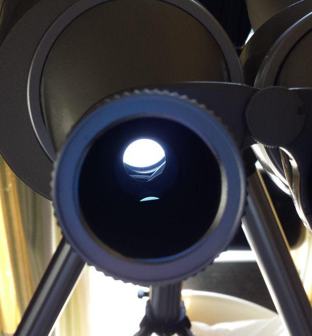 6570799-fingernail Image1.jpg