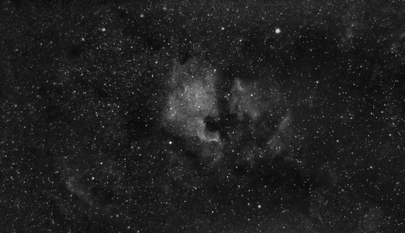 North America Nebula Adjusted Grayscale.jpg