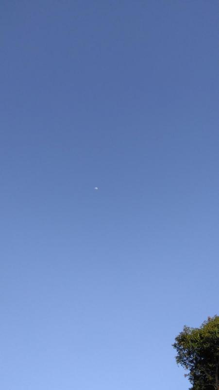 sky small.jpg