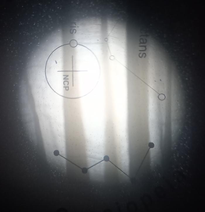 Polarscope.jpg