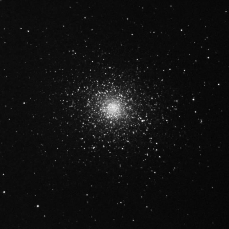 M5-6_2_2021-55x6s.jpg