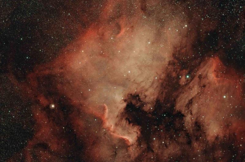 NGC_7000_Cygnus.jpg