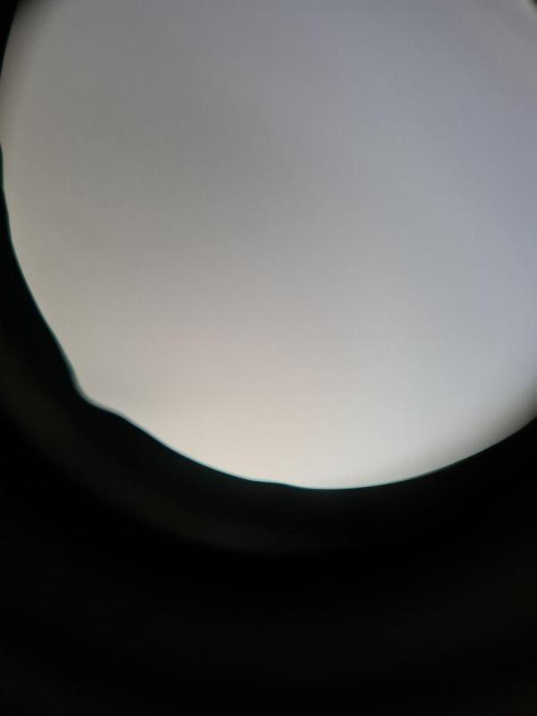 20210625_163612.jpg