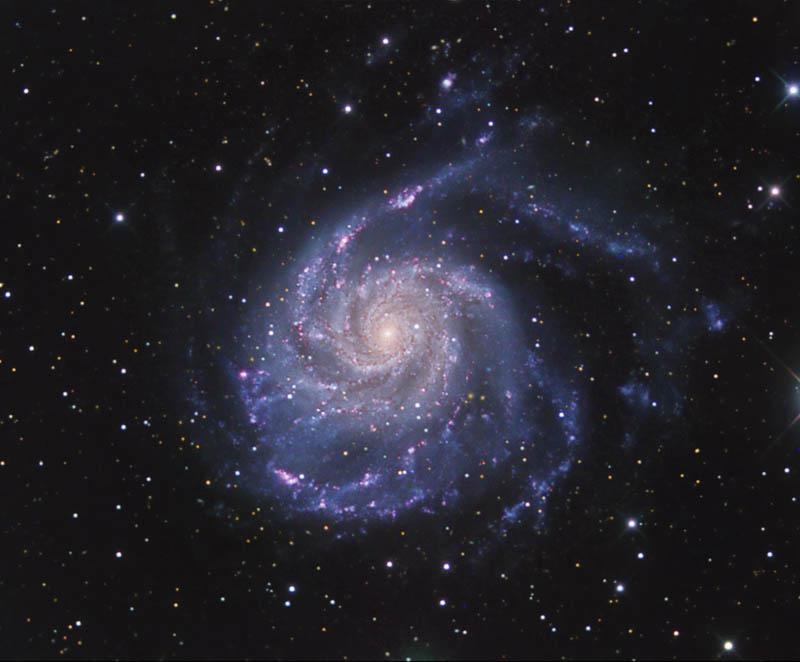 2525872-2451709-M101cn.jpg