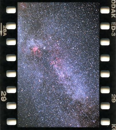 3194795-cygnusb.jpg