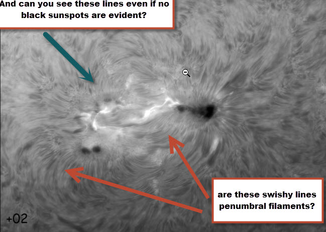 sunspot questions.jpg
