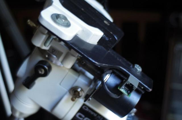 IMGP3676 (2).jpg