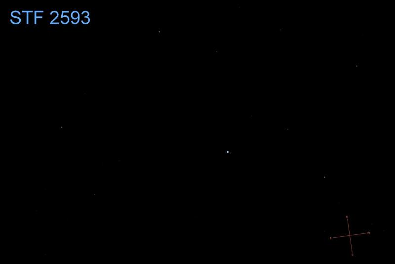 STF 2593-7008-pt-ns-ID.jpg