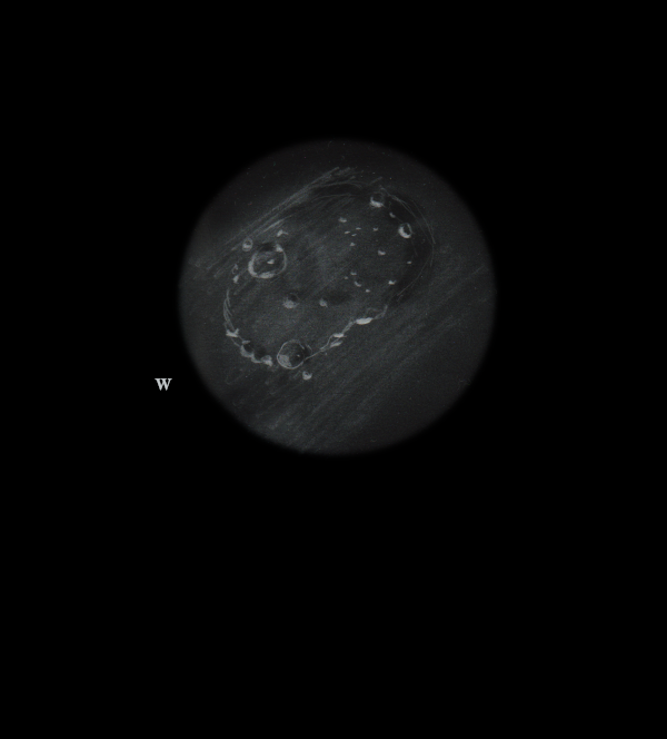 CLAVIUS IFAS resized.png