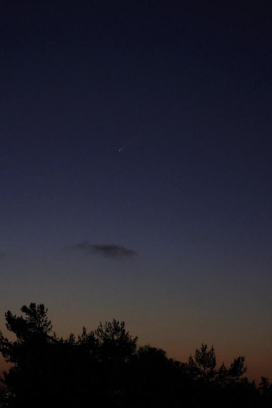 comet2_small.jpg