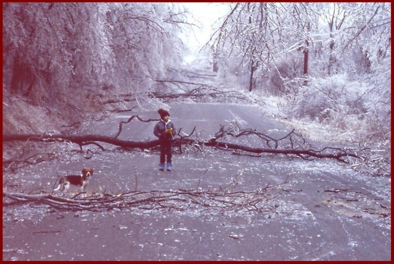 40 ice storm central NY 1991 Mar 3-4.jpg