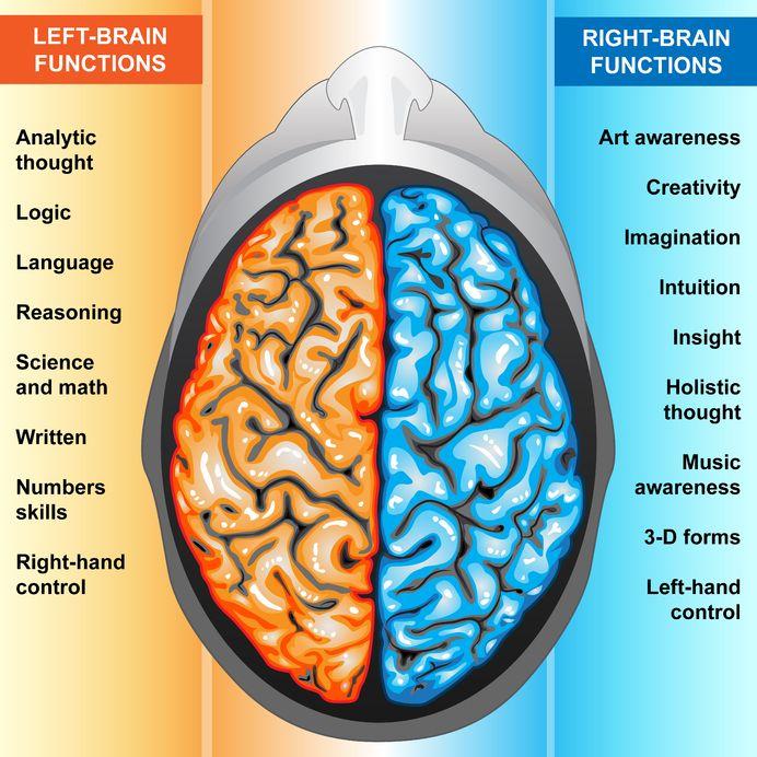 38 left-brain-right-brain.jpg