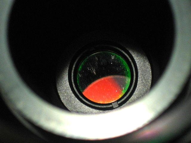 Calcium_BF10.jpg