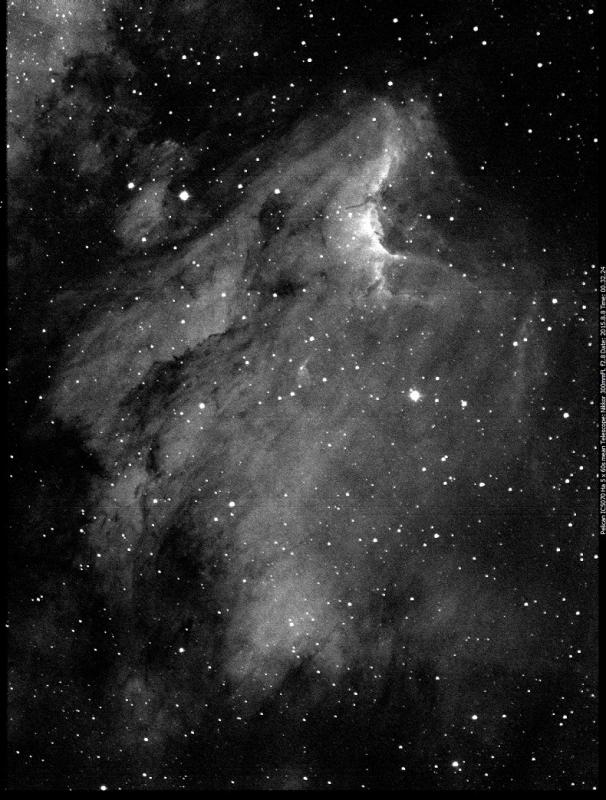 Pelican.IC5070.Ha_2015.8.8_00.32.24_75%.jpg