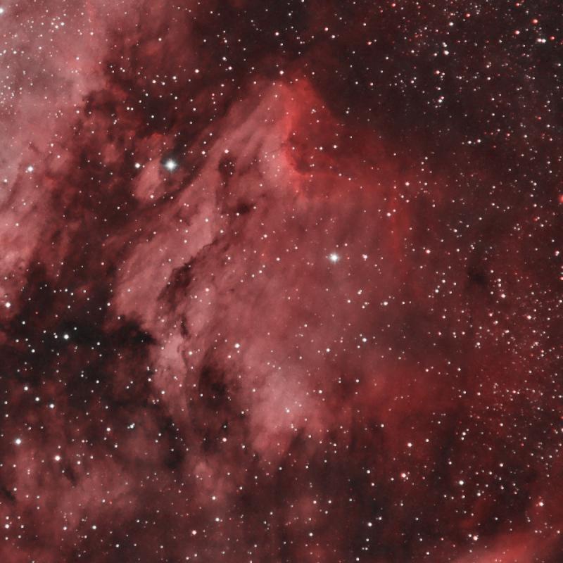 pelican_nebula.jpg