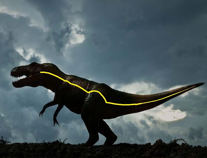 244.1 T-Rex.jpg