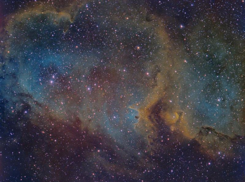 IC1848LSHO_SM.jpg
