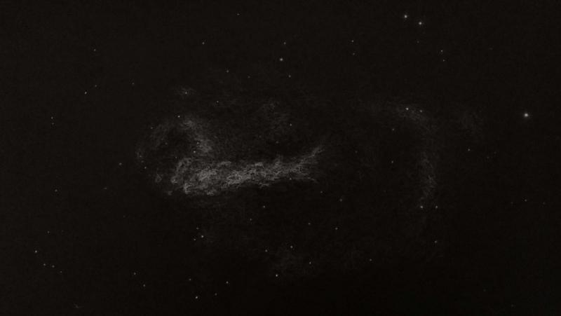 M 17 dibu procesdo II .jpg