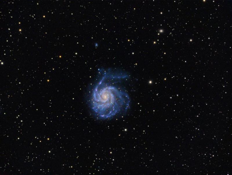 M101_s.jpg