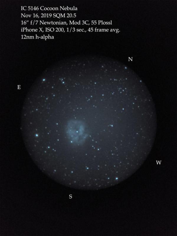 Cocoon Nebula Z16 afocal.jpeg