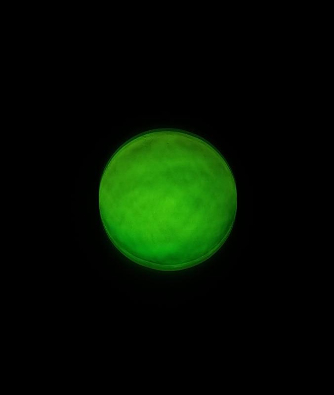 CFF 160 DPAC Green at Focus.jpg