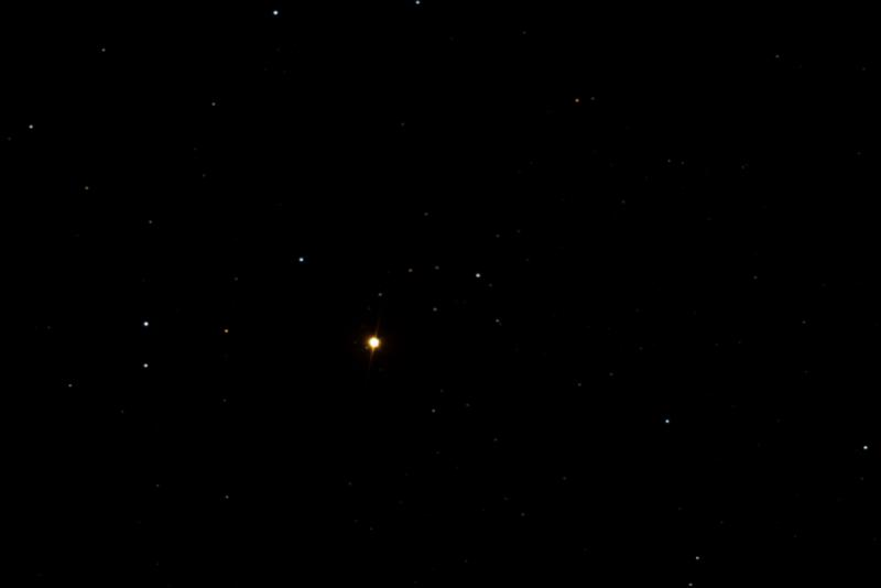 4069629-Garnet Star.JPG