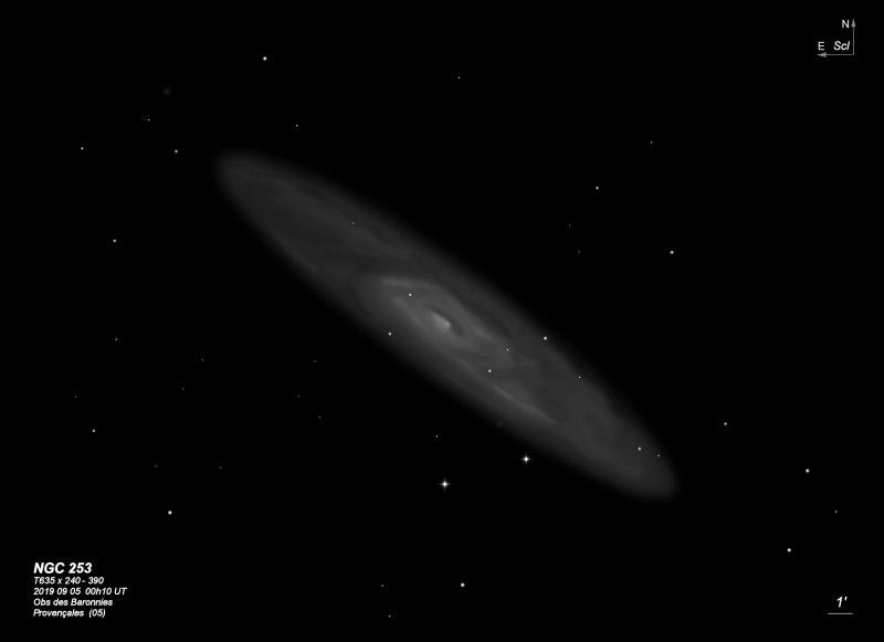 NGC 253  T635 BL 2009.jpg