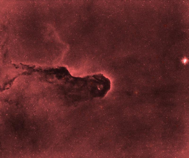 IC1396-StarNet.jpg