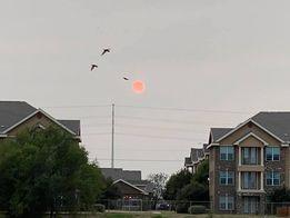 FB-sunset-Nadeesha.jpg