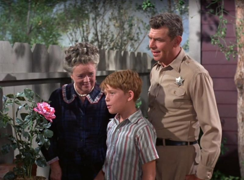 03 Ill-Fated Rose Aunt Bee Football Griffith.jpg